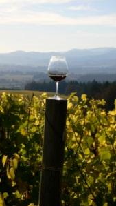 Vista Hills Pinot Glass