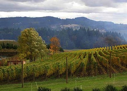willamettevalley