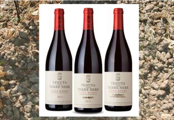 Terre Nere Wines