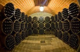 Il borro wine cellar