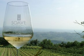 soave vineyard