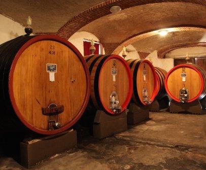 Nebbiolo barrels