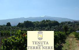 Terre nere Mt Etna
