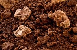 Inama soils